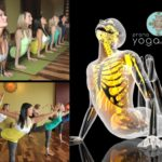 Anatomy - Prana Yoga Studio