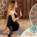 Yin Yoga - Prana Yoga Studio