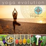 Yoga Evolution - Prana Yoga Studio
